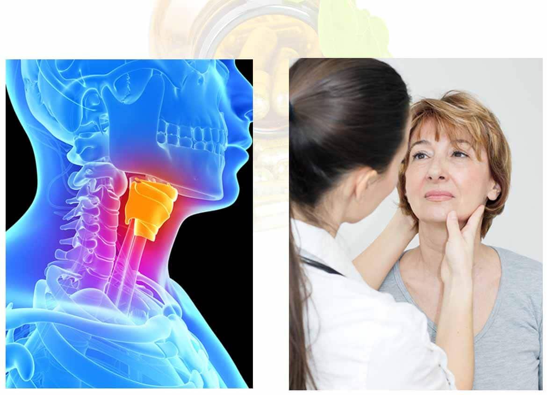 Ayurveda & Schilddrüse: Ganzheitlicher Ansatz & Behandlung