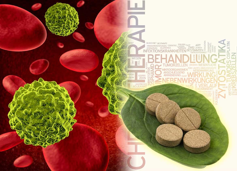 Krebs & Ayurveda: Integrativer Einsatz in der Behandlung